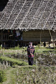 Thailand, Chiang Mai, Baan Tong Luang, Karen village, Karen woman walking in a rice field — Stock Photo