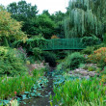 ������, ������: Monet like Garden