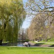 Stock Photo: Spring in Park Celle, Germany
