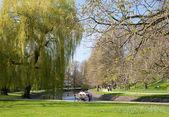 Spring in Park Celle, Germany — Stockfoto