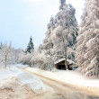 Winter in the german Harz — Stock Photo #11841310