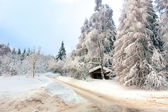Winter in the german Harz — Stock Photo