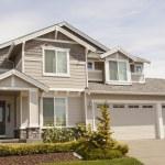 Suburban house — Stock Photo #11547071