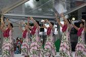 Hula tänzer, osaka, japan — Stockfoto