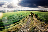 Landscape and road — Stock Photo