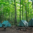 Camping Tents at Rustic Campground - Stock Photo