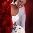 Beautiful Young Bride Portrait — Stock Photo #12144931