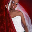Beautiful African American Bridal Portrait - Stock Photo