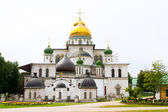 Resurrection Cathedral — Stock Photo