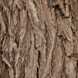 Stock Photo: Texture of Old wood pattern background.
