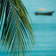 Stock Photo: Tropical boat