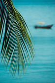 Tropical boat — Foto de Stock