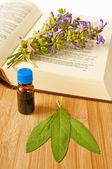 мудрец с травяные настойки и средневековая книга — Стоковое фото