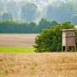 Stock Photo: Hunting stand