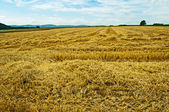 Stubble field with panoramic view — Stock Photo