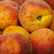 Bulgariharvest peaches — Stock Photo #11300800