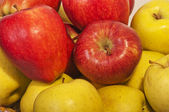 Red and yellow apples — Stock Photo