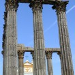Temple of Diana — Stock Photo #11334609