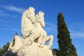 статуя двух лошадей — Стоковое фото