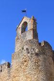 Castillo de tomar — Foto de Stock