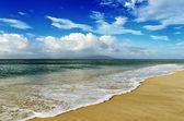 Tropischen Strand — Stockfoto