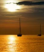 Segelbåtar — Stockfoto