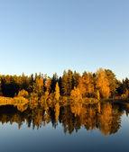 Sjön — Stockfoto