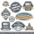 Premium quality and guarantee label collection — Vektorgrafik