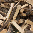 Firewood — Stock Photo #11804549