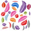 Colorful Bird Feather Set - Image vectorielle