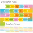 Detox Diet Plans Chart - Stock Vector