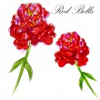 Red Bells Flower — Stock Vector