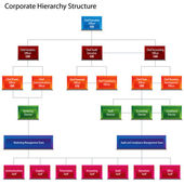 Corporate Hierarchy Structure Chart — Stock Vector