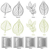 Tree Leaf Type Set — Stock Vector