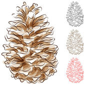 Watercolor Pine Cone — Stok Vektör