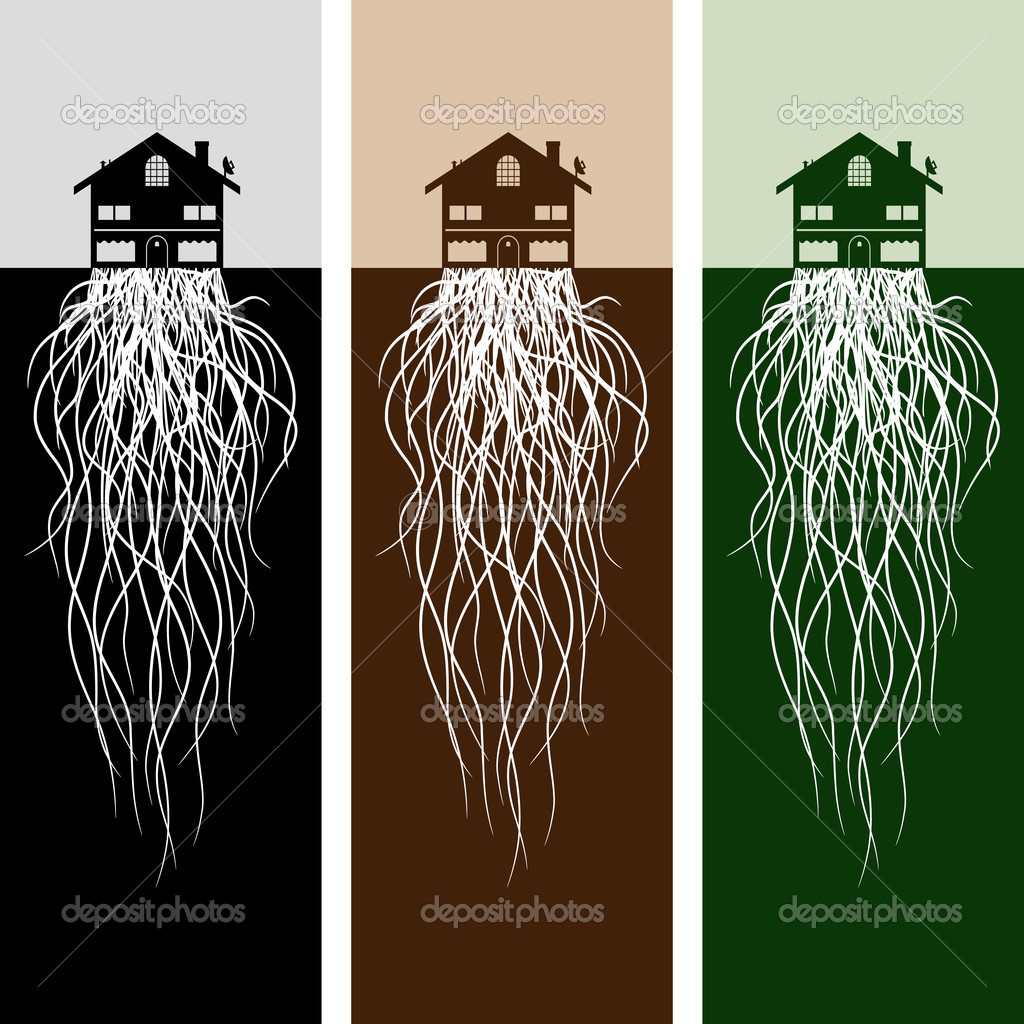 An image of house with roots. — Stock Vector #11576430