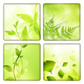 Eco background collection — Vector de stock