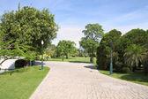 Large chemin à pied dans le jardin public. — Photo