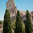 Colosseum view from forum — Stock Photo #11943746