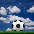 Soccer football on grass field — Stock Photo #10803593