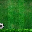 Soccer ball on green grass — Stock Photo #11208952