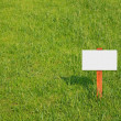 Empty sign on green grass — Stock Photo