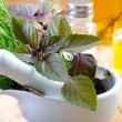 Aroma spice and greens — Stockfoto