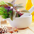 Aroma spice and greens — Stock Photo #11997682