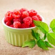 rasberry — Stock Photo