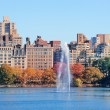 New York City Manhattan Central Park — Stock Photo #11173635
