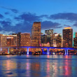 Miami night scene — Stock Photo #11177989