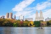 New yorku manhattan central park — Stock fotografie