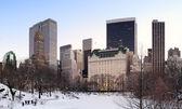 панорама центрального парка нью-йорка манхэттена — Стоковое фото