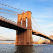 New York City Manhattan Brooklyn Bridge — Stock Photo #11498825